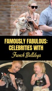 Celebrities with French Bulldogs